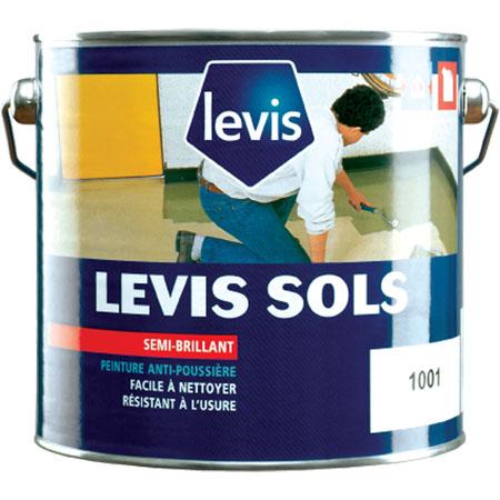 Peintures Levis Resine De Protection Pour Peinture